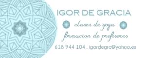IGOR LOGO2